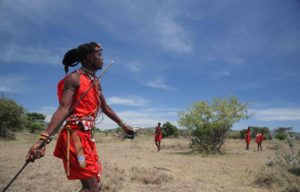 Maasai throwing spear