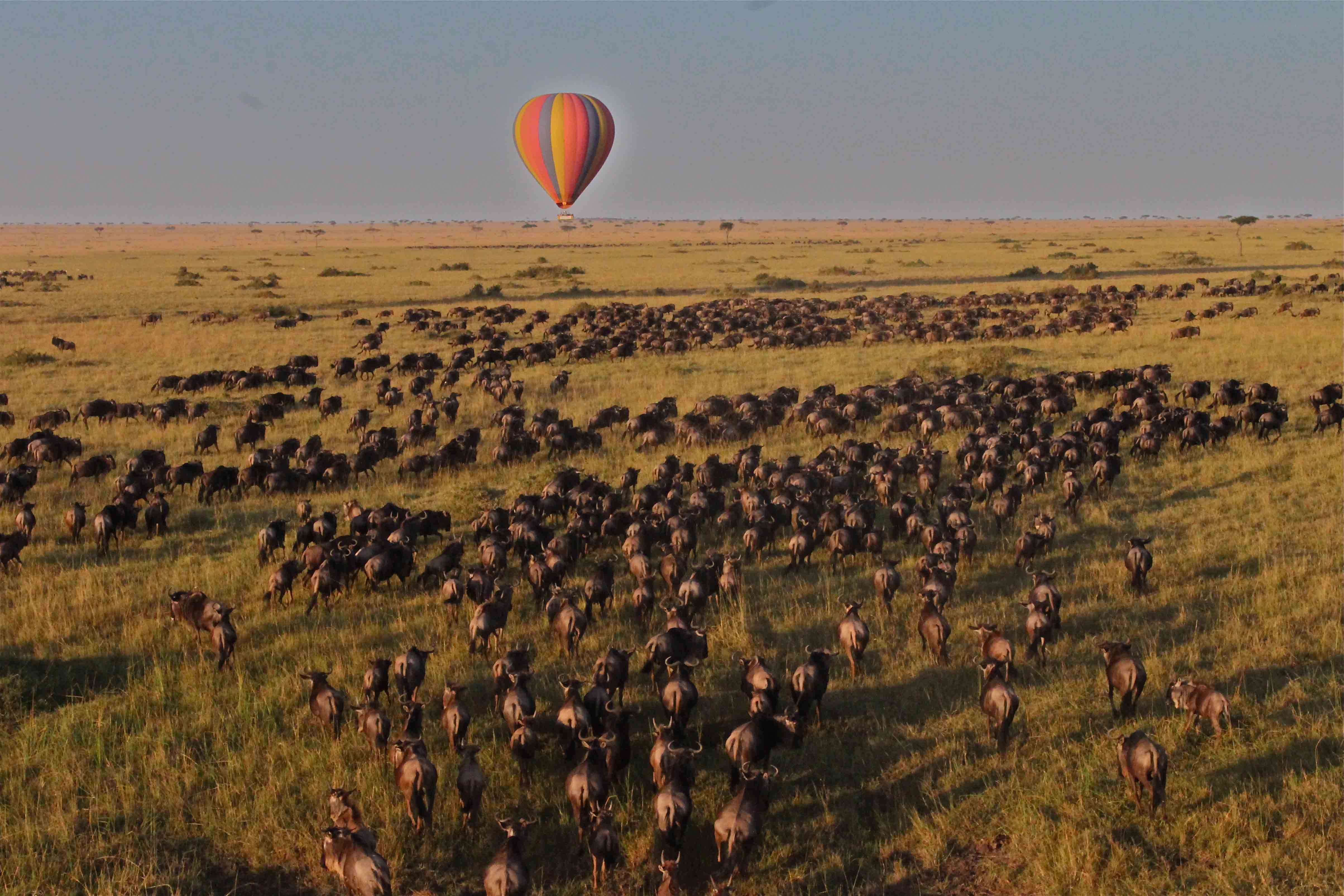 Ballooning over the Great Migration