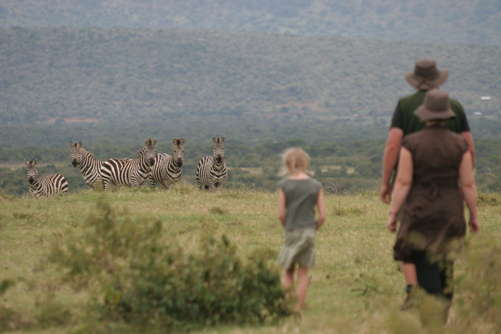 Guided bush walk for the family in the Mara