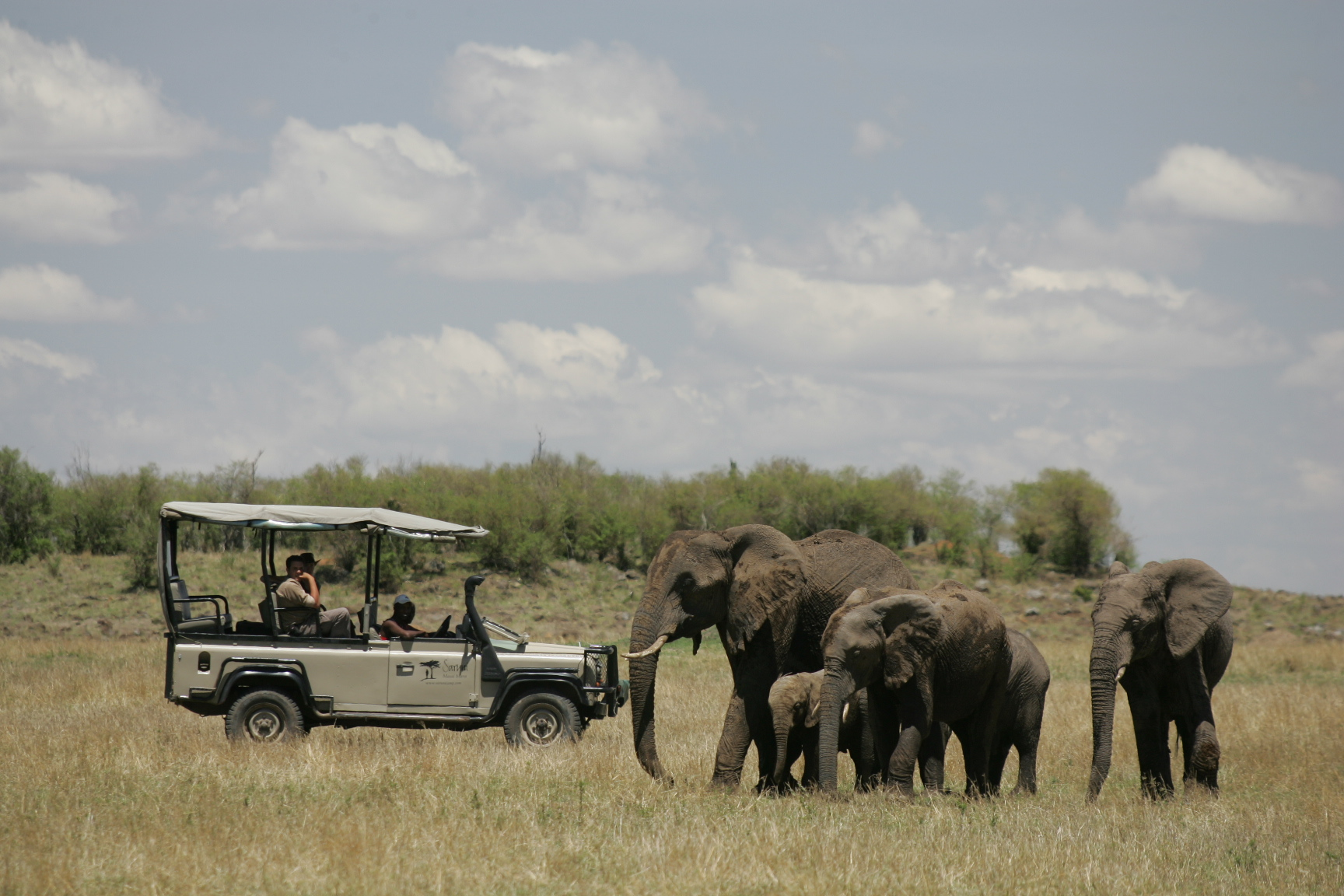 Saruni car with elephants in the Mara